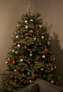 Our Christmas Tree when it was fresh and perfect.