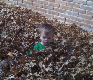 We didn't rake all fall and we ended up with the leaf pile to prove it. I raked up 11 or 12 bags this week in just the front yard. Brenden enjoyed playing while I worked.
